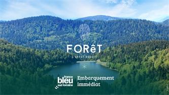 Embarquement Immédiat pour un voyage des sens FORêT l'effet Vosges sur France Bleu Sud Lorraine!